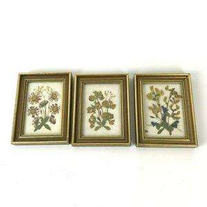 Vintage Dried Pressed Flower Mini Frames set of 3